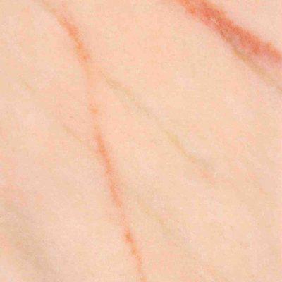 Rosa Portogallo Salmonato 2